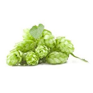 BOS-RCM-SU: Zajištění dodávky všech surovin pro malý pivovar