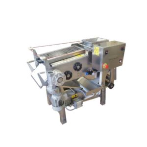FBP-300 Fruit belt press 300kg/hr
