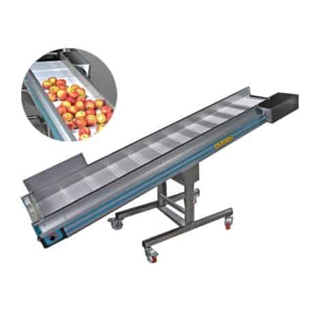 fsc-2300 Fruit sorting conveyor