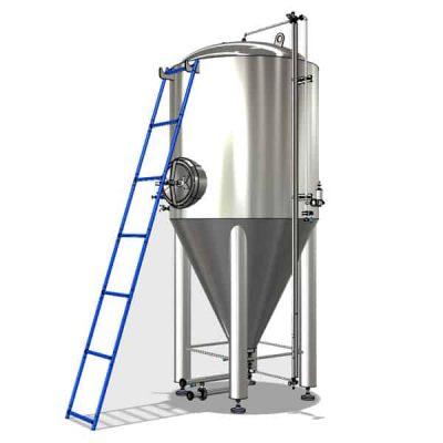 Ladder for fermentation tanks